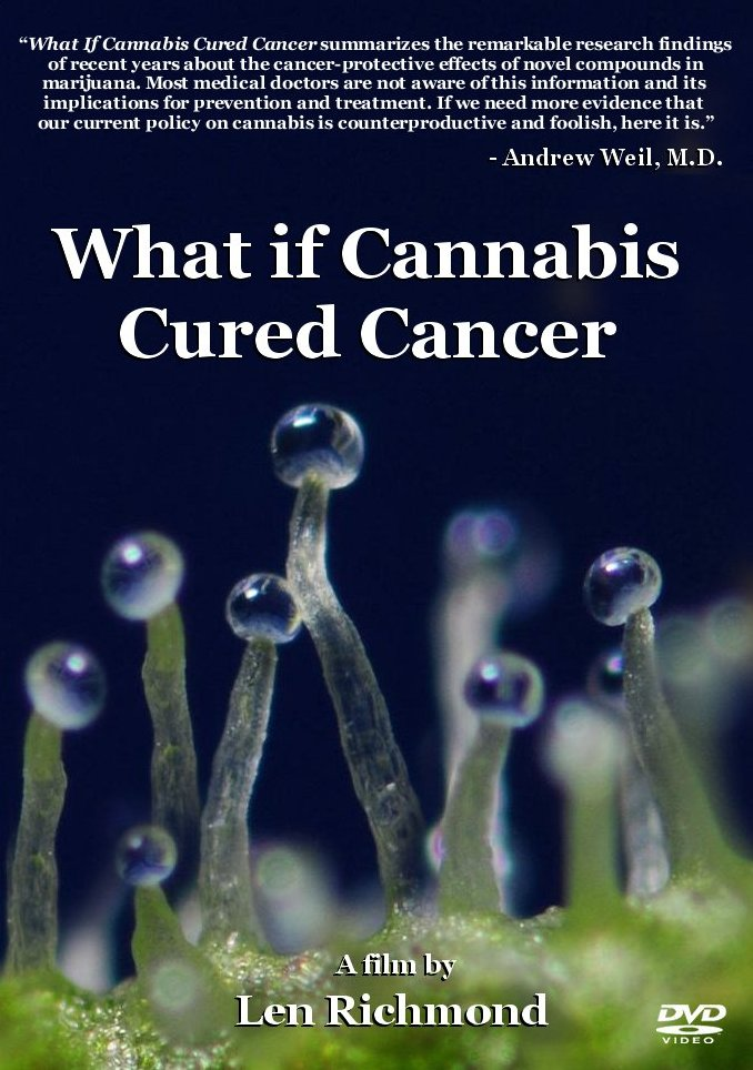 CANNABIS DVD FRONT COVER 6-12