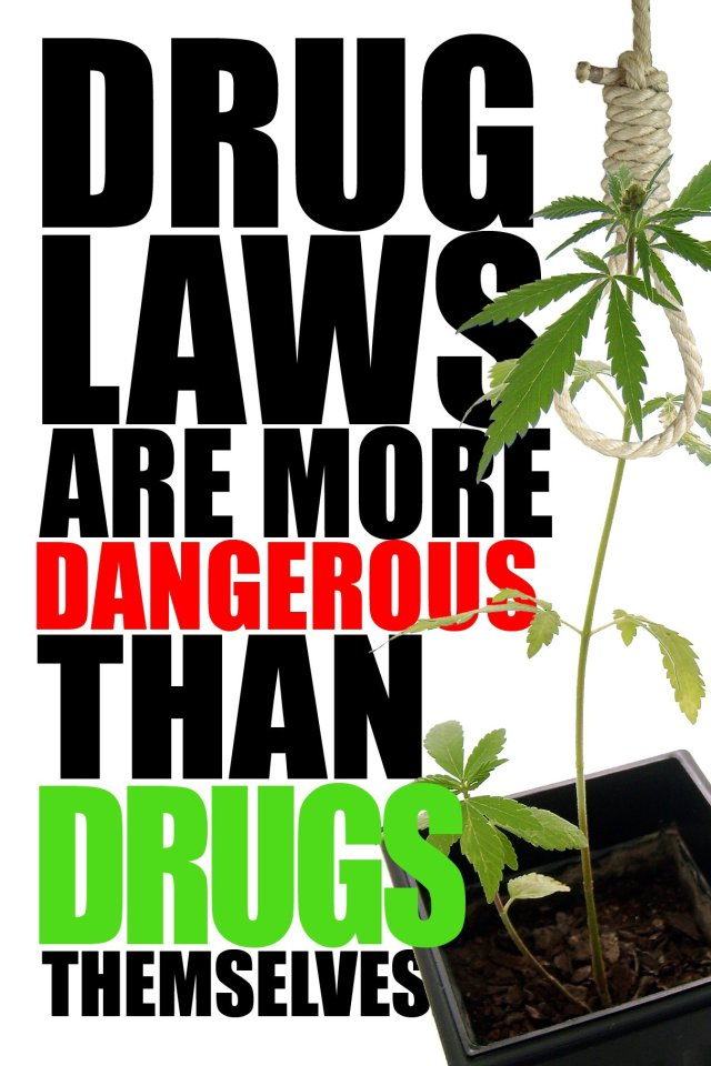DRUG LAWS ARE MORE DANGEROUS THAN DRUGS
